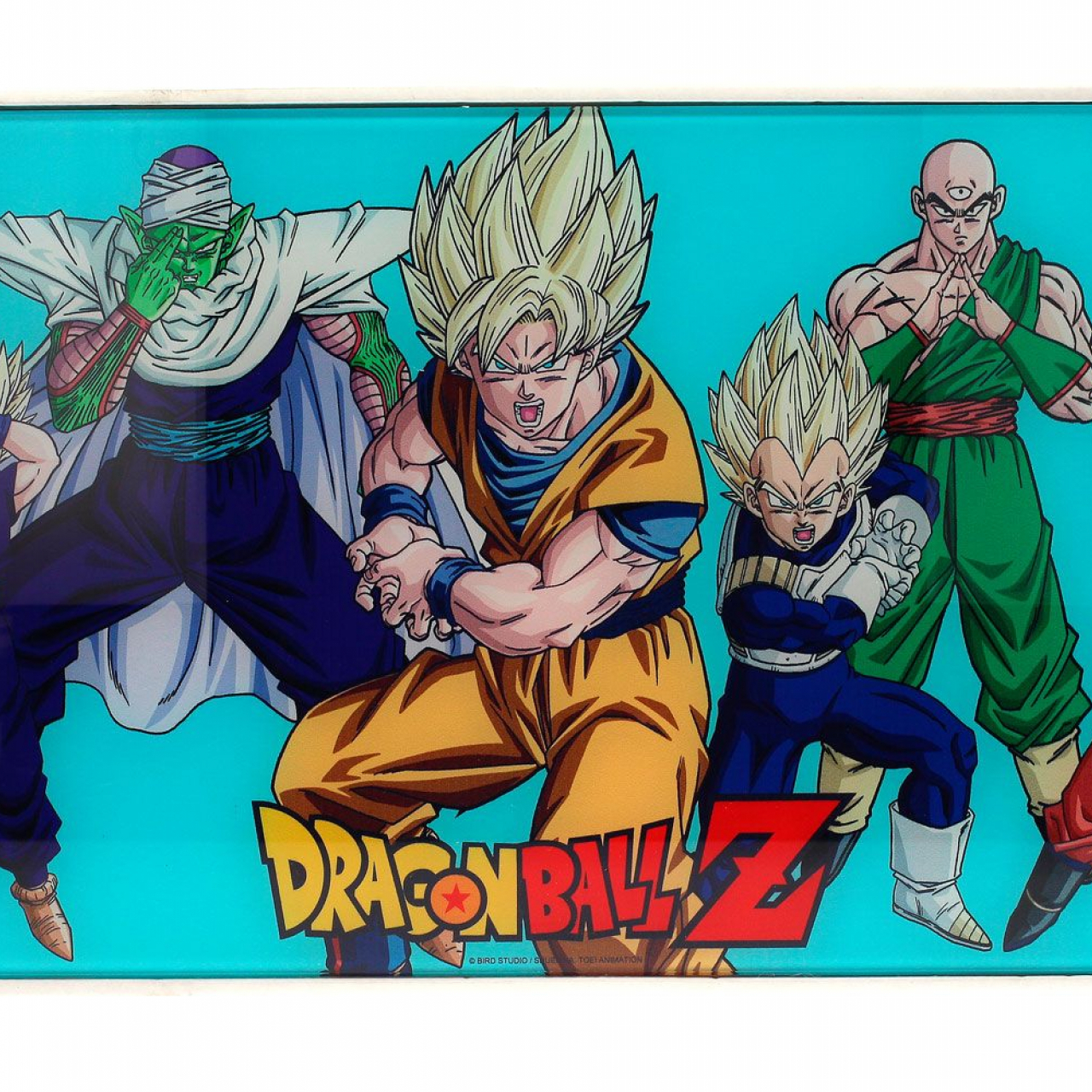 Dragon Ball Z Glass Poster Heroes 30 x 60 cm